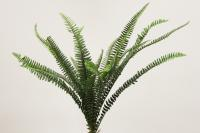 BG10273GR Boston Fern Bush Green 31""