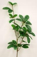 SY10752GR Mini Ficus Spray Green 37""