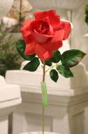 FN10001RDWH Hybrid Tea Rose Spray (Nat Touch) Red White 24""