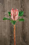 FL11234PK Protea Spray Pink 28""