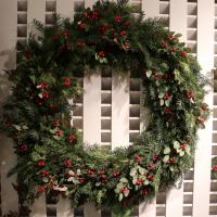 XZ10070RG Mixed Pine Holly Wreath RG 36""
