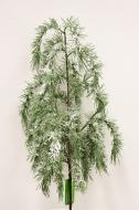 XM12142GRSN Long Pine Weeping Spray w/ Snow Green 37""