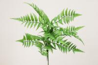 SY10621GR Fern Spray Green 32""