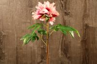 FL11223PK/FU English Peony Spray Pink Fuchsia 27""