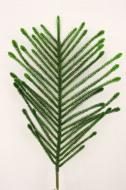 XM12125GR Norfolk Pine Spray Green 42""