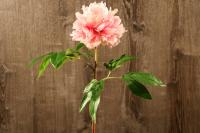 FL11223PK English Peony Spray Pink 27""